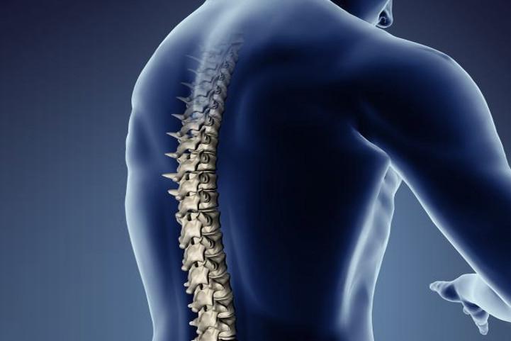 Espaldera moto columna vertebral proteccion